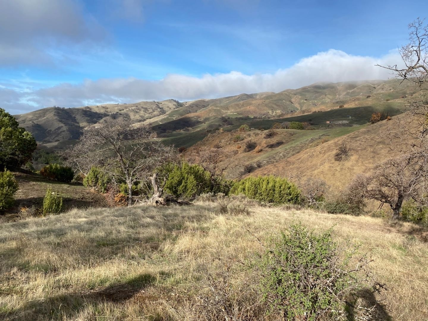 Land for Sale at Paicines, CA 95043