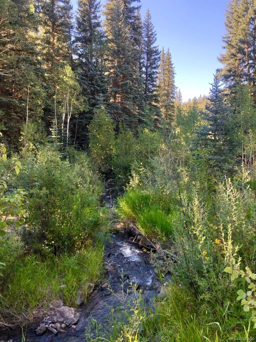 10. Land for Sale at Telluride, CO 81430
