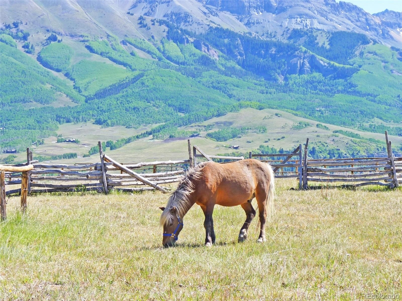 6. Land for Sale at Telluride, CO 81435