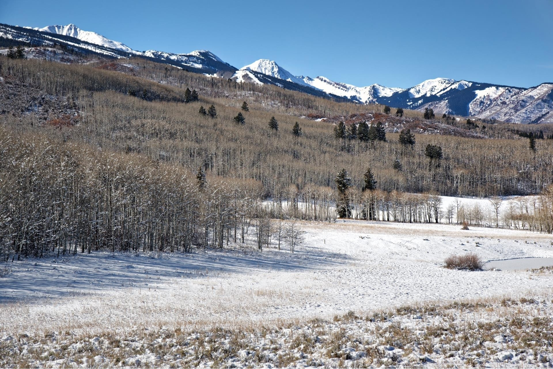 7. Land for Sale at Aspen, CO 81611