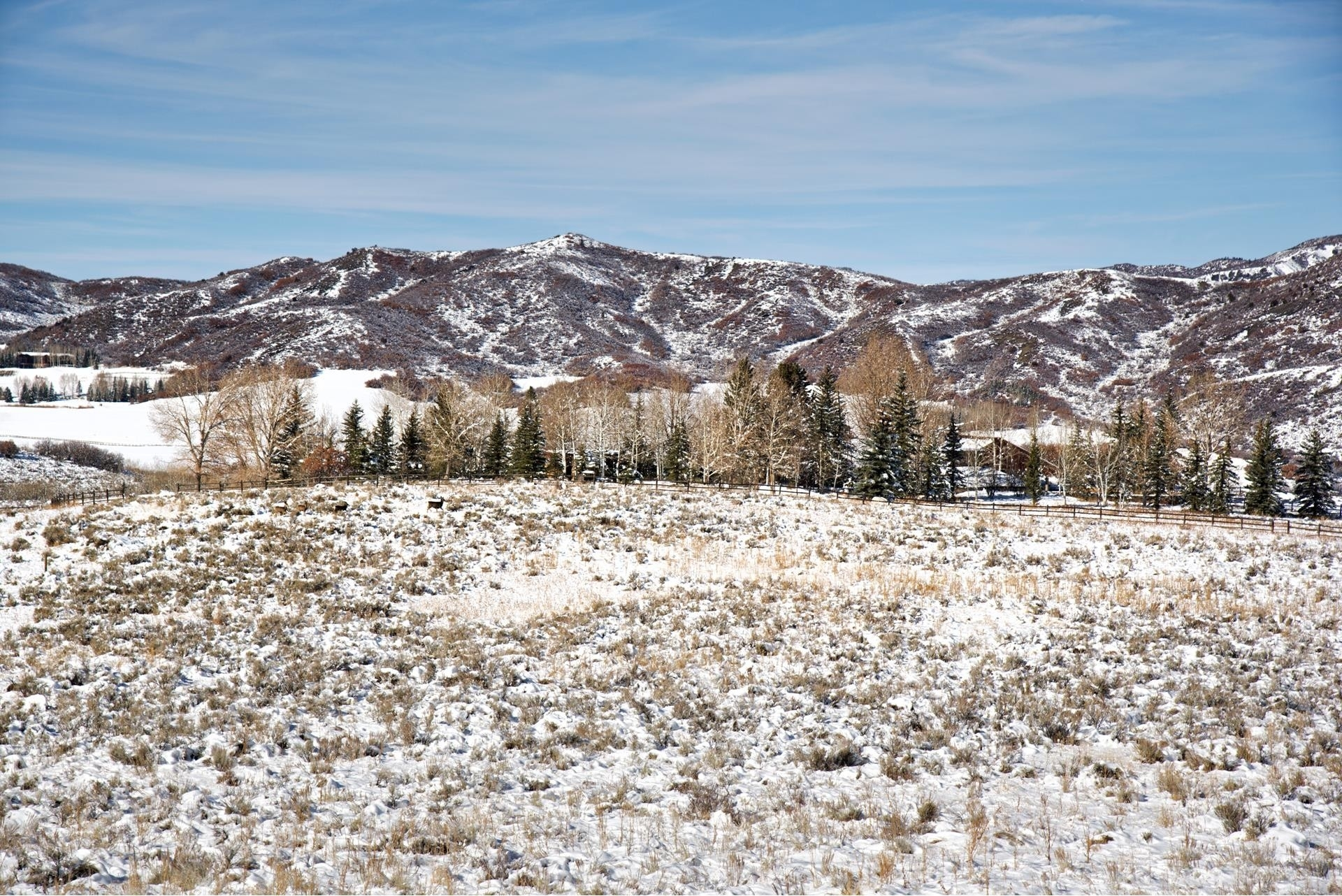 6. Land for Sale at Aspen, CO 81611