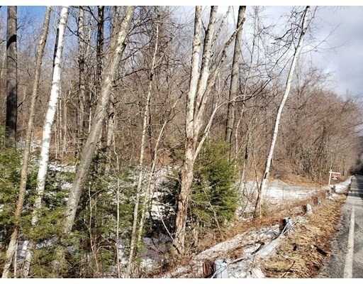 Land for Sale at Chester, MA 01050