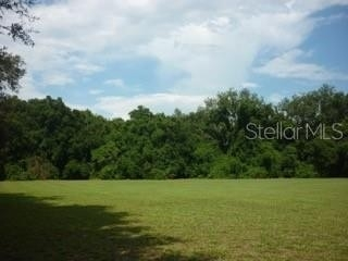 Commercial for Sale at Greater Thonotosassa, Thonotosassa, FL 33592