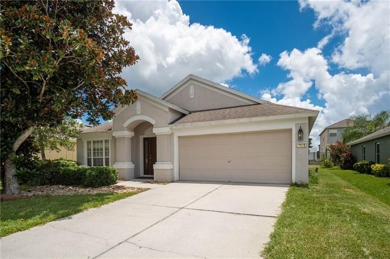 1. Single Family Homes for Sale at Palm Cove, Wesley Chapel, FL 33545