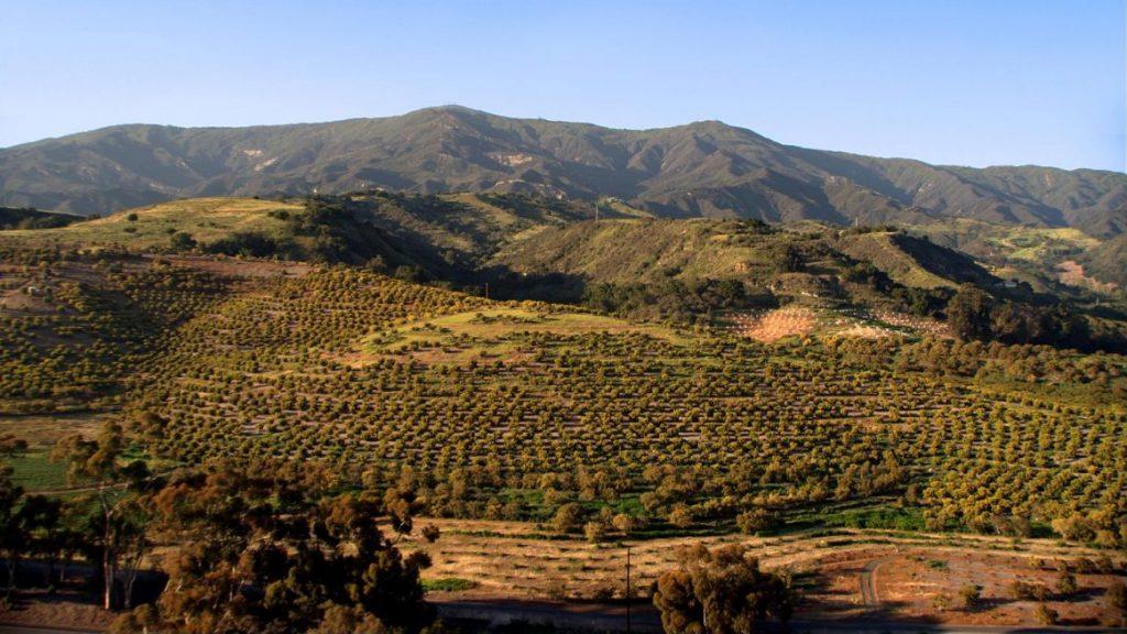 Land for Sale - Las Varas Ranch