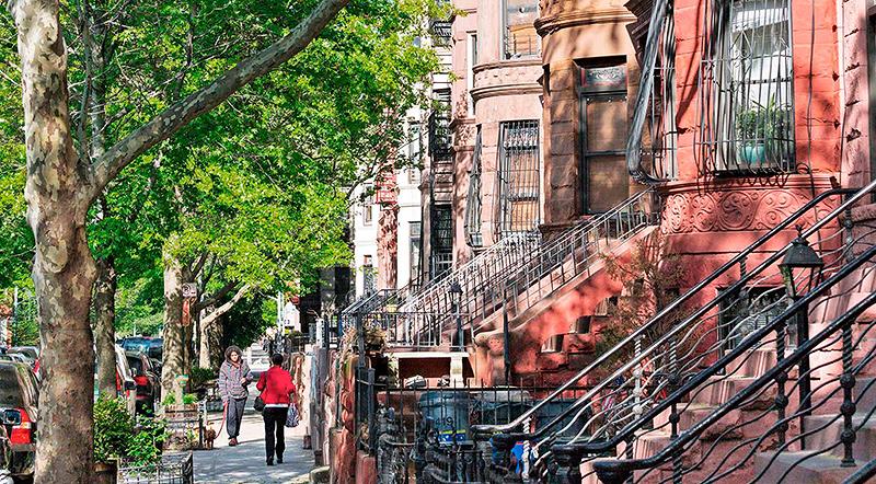 Elliman Insider My Neighborhood Bed-Stuy