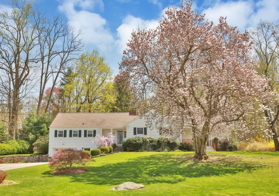 31 Aldridge Rd chappaqua guide