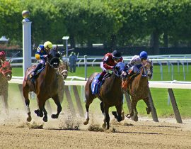 Belmont Stakes Douglas Ellimam