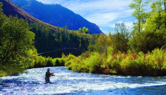 Fly Fishing Aspen Colorado