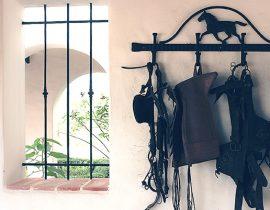 Equestrian decor image