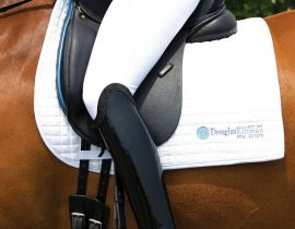 Douglas Elliman Equestrian