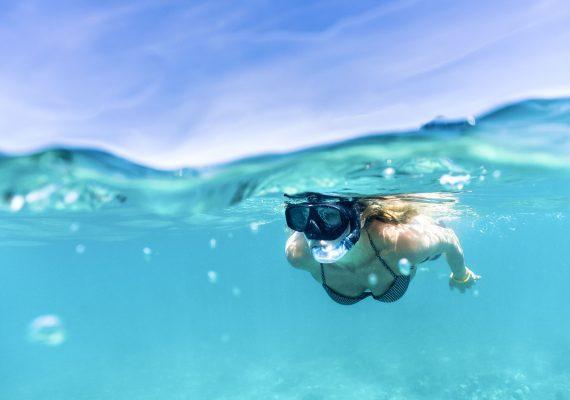 Palm Beach Snorkel Trail