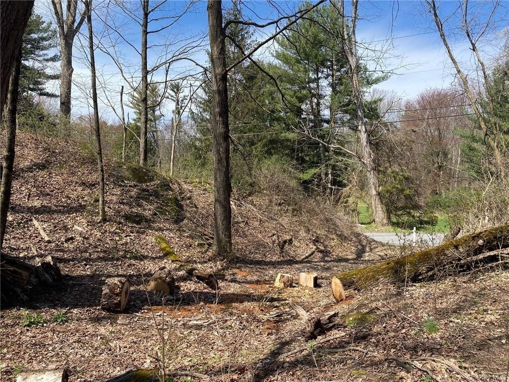 Land for Sale at Rosendale, NY 12472