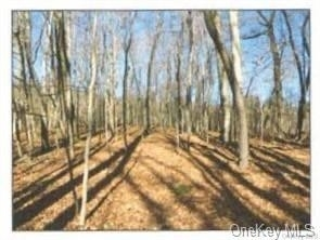 2. Land for Sale at Carmel, NY 10512