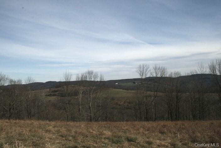 Property at Fremont Center, NY 12736