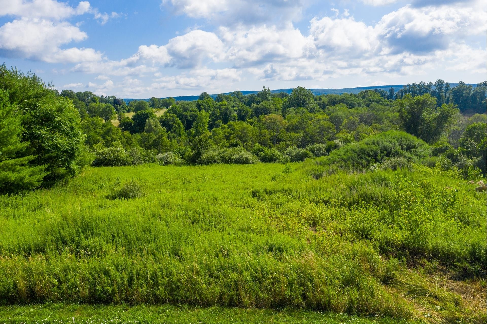 Land for Sale at Patterson, NY 12563