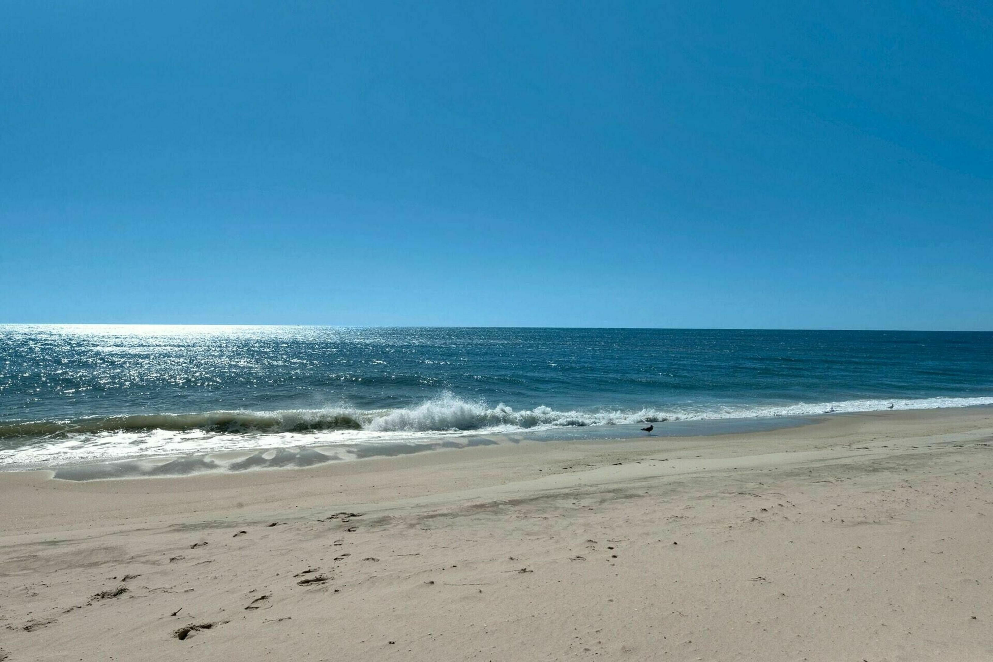 17. Co-op Properties for Sale at East Quogue, NY 11942
