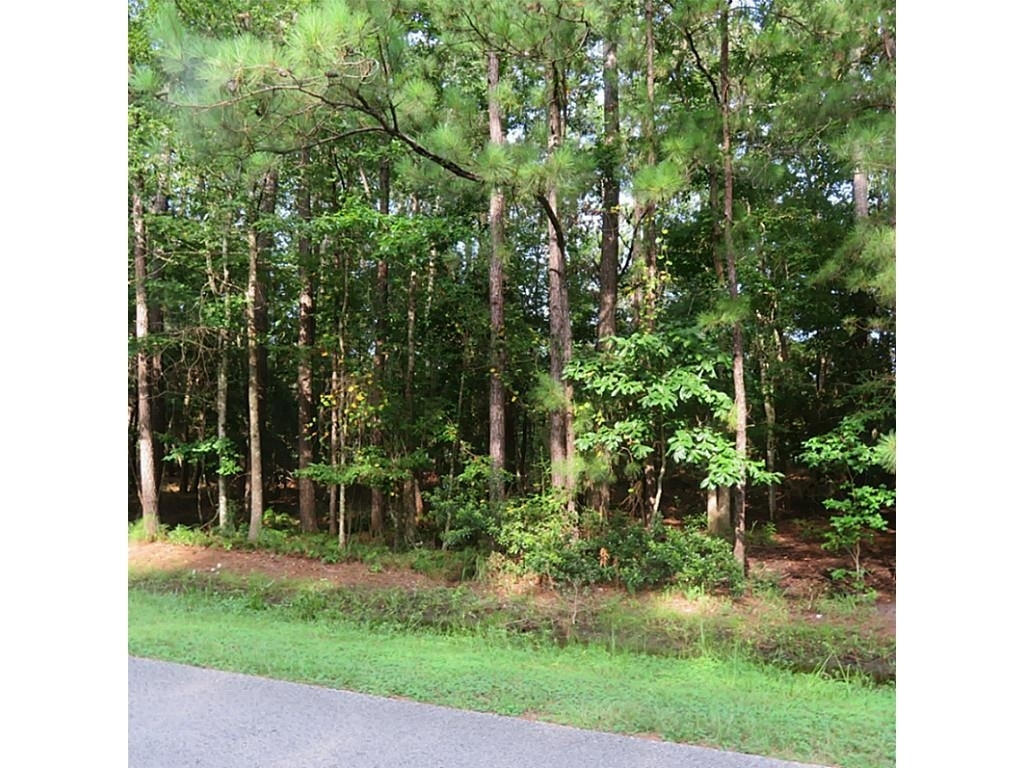 Land for Sale at Village Mills, TX 77663