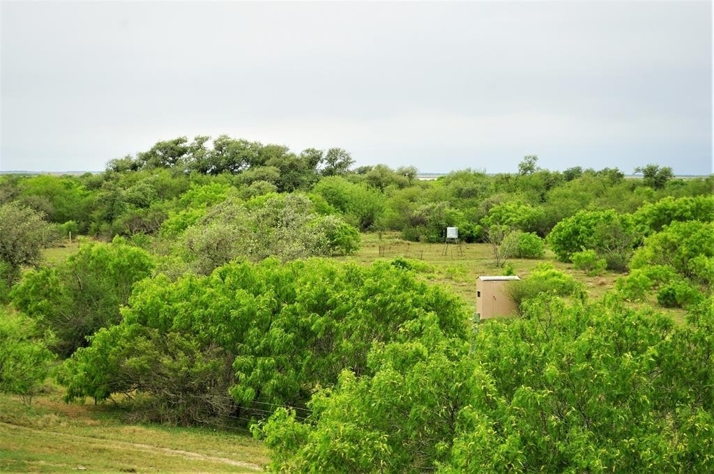 Property for Sale at Seadrift, TX 77983