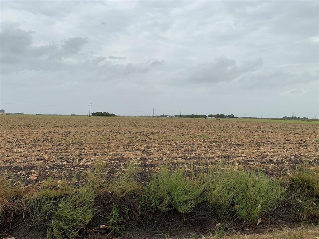 Land for Sale at Nada, TX 77460