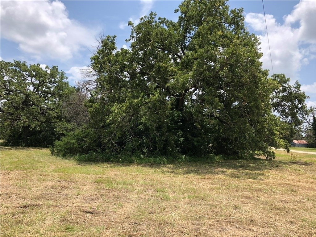 2. Commercial / Office at Giddings, TX 78942