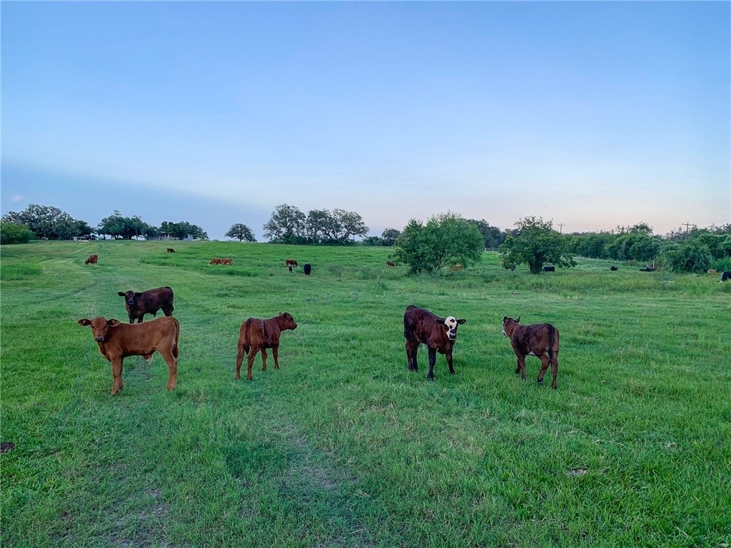 2. Land for Sale at Refugio, TX 78377