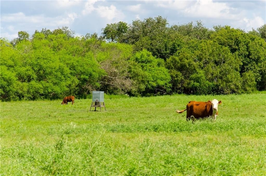 38. Land for Sale at Refugio, TX 78377