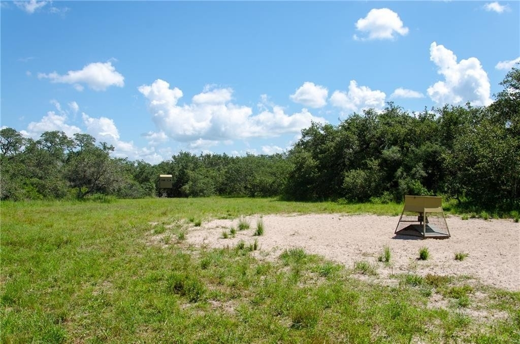 19. Land for Sale at Refugio, TX 78377