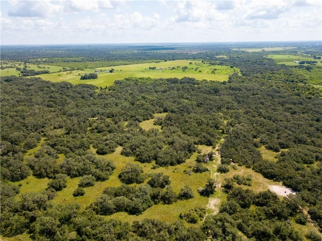 4. Land for Sale at Refugio, TX 78377